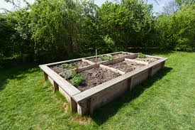 How to Build a Home Garden