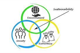 How to create a sustainable and successful future