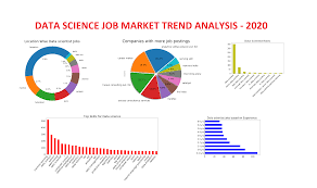 Data science learning - Academic vs along with job