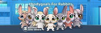 Blockchain and Bunny Rabits
