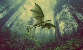 Dragons, drakes and wyverns oh my! The history of the dragon.