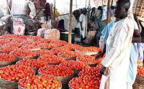 Subsaharian food