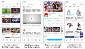 What is Bilibili